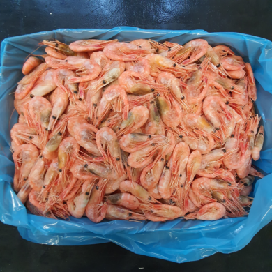 Prawn Cooked Shell on 90/120+ 5kg FROZEN