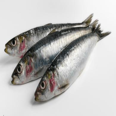 Sardines Whole 1kg